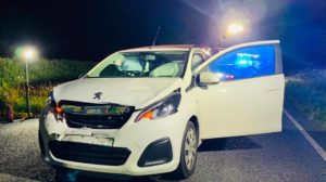 Peugeot 108 crashed with deer in East Knighton