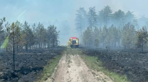 Wareham Forest fire May 2020