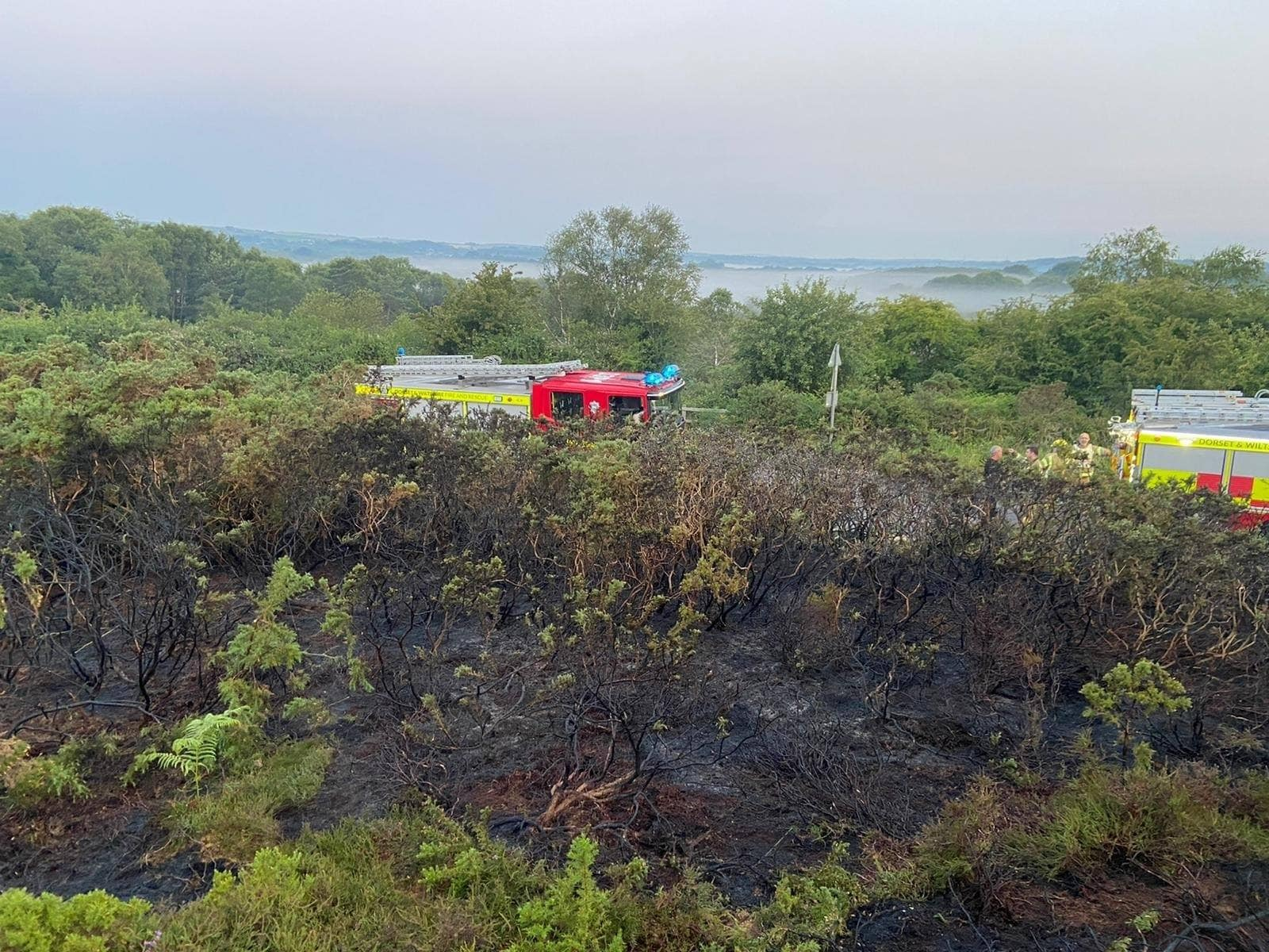 Fire engines and heathland fire