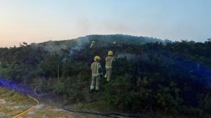 Heath fire extinguished by firefighters
